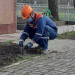 В канун Дня Победы энергетики филиала Россети Центр Курскэнерго привели в порядок памятники