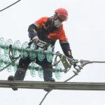 «Россети Ленэнерго» повысили надежность электроснабжения потребителей Сланцевского района
