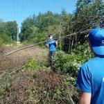 Участники студенческих энергетических отрядов постигают азы профессии на объектах электросетевого хозяйства Тверьэнерго