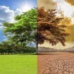 Ученые разглядели большую проблему в изменении климата за последние несколько лет