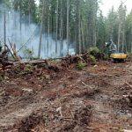 Глава Кологривского муниципального района Сергей Данилов выразил благодарность руководству филиала Костромаэнерго за помощь огнеборцам в тушении   сильнейшего лесного пожара в Кологривском районе и оперативное реагирование на нештатную ситуацию