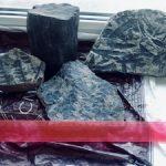 «Ургалуголь» передает в музей уникальные палеонтологические находки
