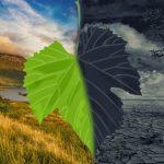 """Климат-контроль – как стихийные бедствия привели мир к """"зеленой энергетике""""?"""