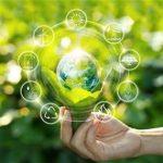 Климатические инвестиции – как выгодно решать глобальные проблемы?