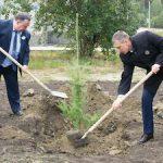 Атомщики Заречного посадили деревья на улице Ленинградской