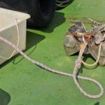 Анализ проб донных отложений, воды и воздуха в районе Морского терминала КТК не показал превышений ПДК