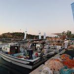 В Турции прошли соревнования по рыбной ловле в районе сооружения АЭС «Аккую»