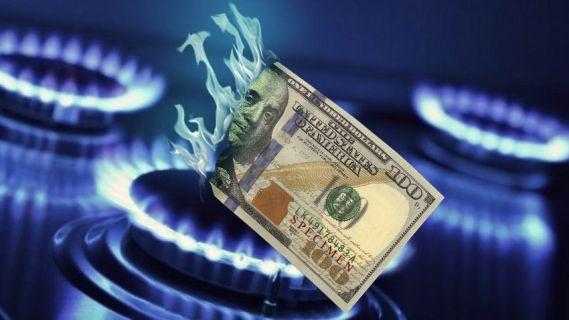 конфорка газовая деньги